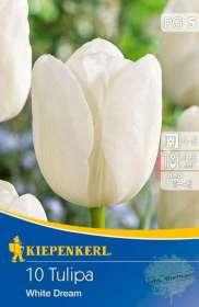 kiepenkerl-501201