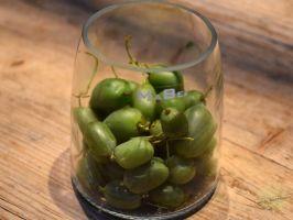 johs-wortmann-herbst-lieblinge-kiwibeere