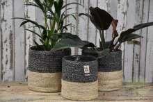 Pflanzkorb Zimmerpflanzen Wortmann Gartencenter Shop