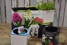Pflanzgefäße Kräutertopf Lechuza Bewässerung Wortmann Shop